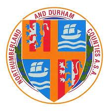 n & d logo